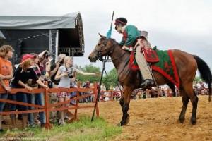 Фестиваль День лошади
